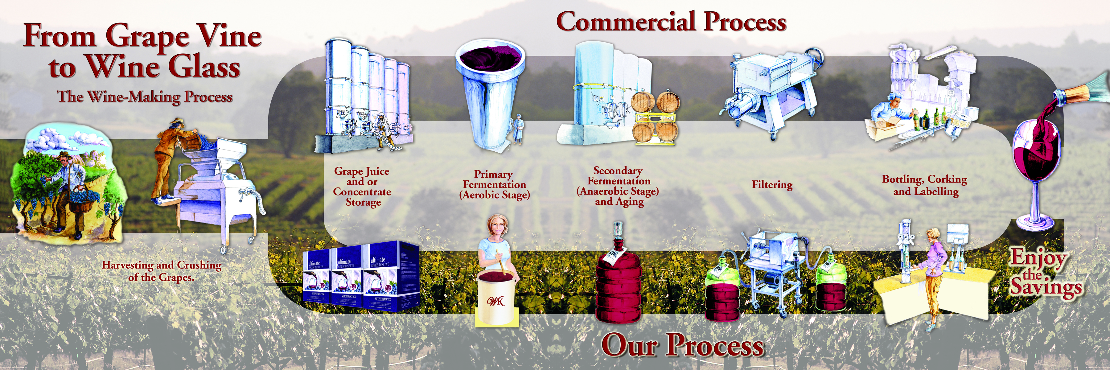 wine making process Beginners guide to wine making the first question we normally get asked is what do i need the following is a list of essential equipment to make 30 bottles of wine (it's the same for 6 bottles but smaller containers.